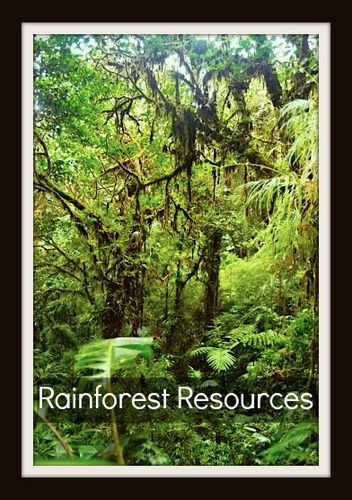 Rainforest Resources for Kids: characteristics, geography, vocabulary, background info, links, photo/virtual tours, books, on-line games, movies, resources.