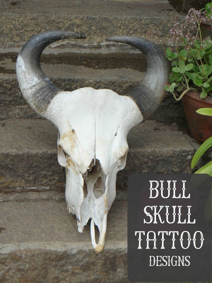 Bull skull tattoos can symbolize both death and strength. They can be inked in many different ways, to reflect different meanings. Get ideas and inspiration for your tattoo here!