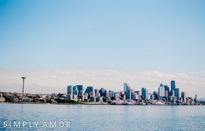 seattle travel tips seattle skyline from the water beautiful view