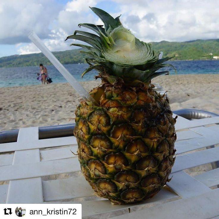 Ananas. Tenker nå på piña colada . #reiseliv #reiseblogger #reisetips  #Repost @ann_kristin72 with @repostapp  Bare et glimt fra romjulen 2014  Da jeg var på den Dominikanske republikk var jeg med på en båttur til en av de små øyene i nærheten. Husker ikke navnet i farta. Paradise island eller noe sånt. ................................................................... #dendominikanskerepublik #dominicanrepublic #ananas #sand #strand #beach #destination