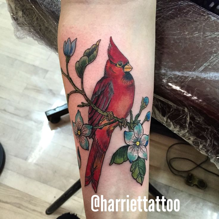Bird Tattoos Shamrock Tattoos And: 17 Best Ideas About Cardinal Tattoos On Pinterest