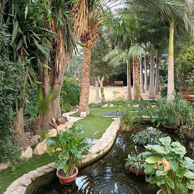 Tropic Garden In 2020 Garden Photo Tropical