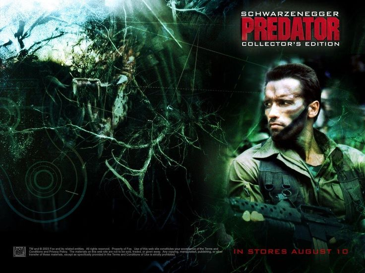 Predator Arnold Schwarzenegger Out Of This World HD Breathtaking