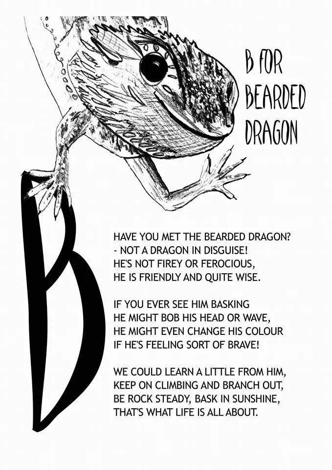 B is for bearded dragon.