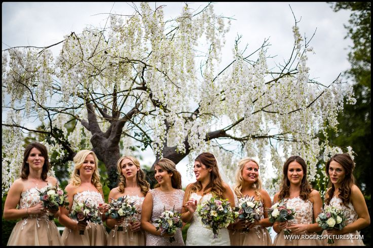 Bride and Bridesmaids in front of a tree that appeared overnight -