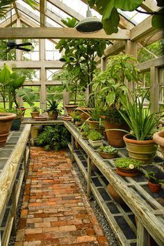 Garden Room :: Potting Shed :: Mulberry Plantation near Charleston....one of the greenhouses