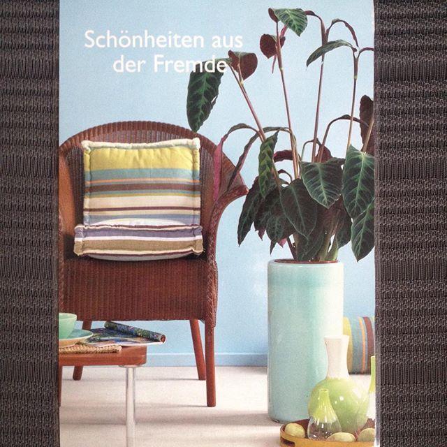 #chair#stuhl#wickerchair#schaukelstuhl#homeplant#zimmerpflanze#planter#übertopf#cushion#kissen#vase#flowervase#blumenvase#pattern#muster#home#homedecor#homedesign#design#deco#decoration#living#interior#möbel#schönerwohnen#wohnidee#einrichten#wohnzimmer#gemütlich#wohnung