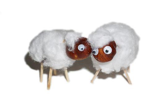 Eine gewisse Ähnlichkeit mit Shaun, dem Schaf lässt sich nicht leugnen. Für den Schafs-Look einfach weiße Watte auf Körper plus Kopf kleben. © vision net ag