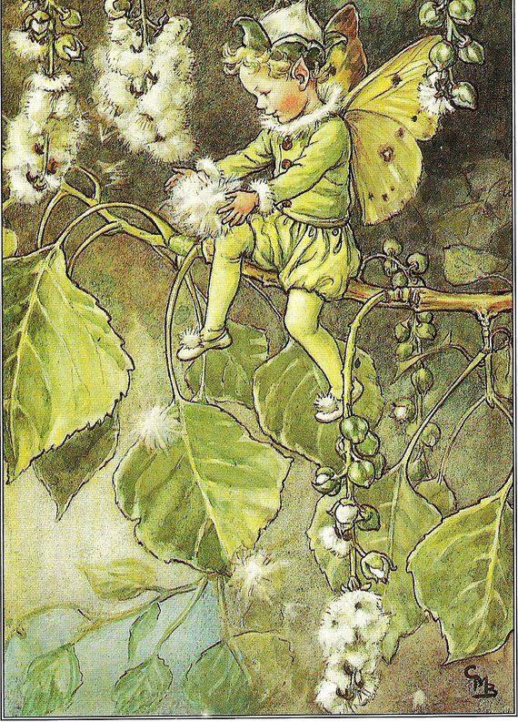 Flower Fairy Print Cicely M Barker Vintage Botanical Art Etsy Flower Fairies Fairy Pictures Botanical Art