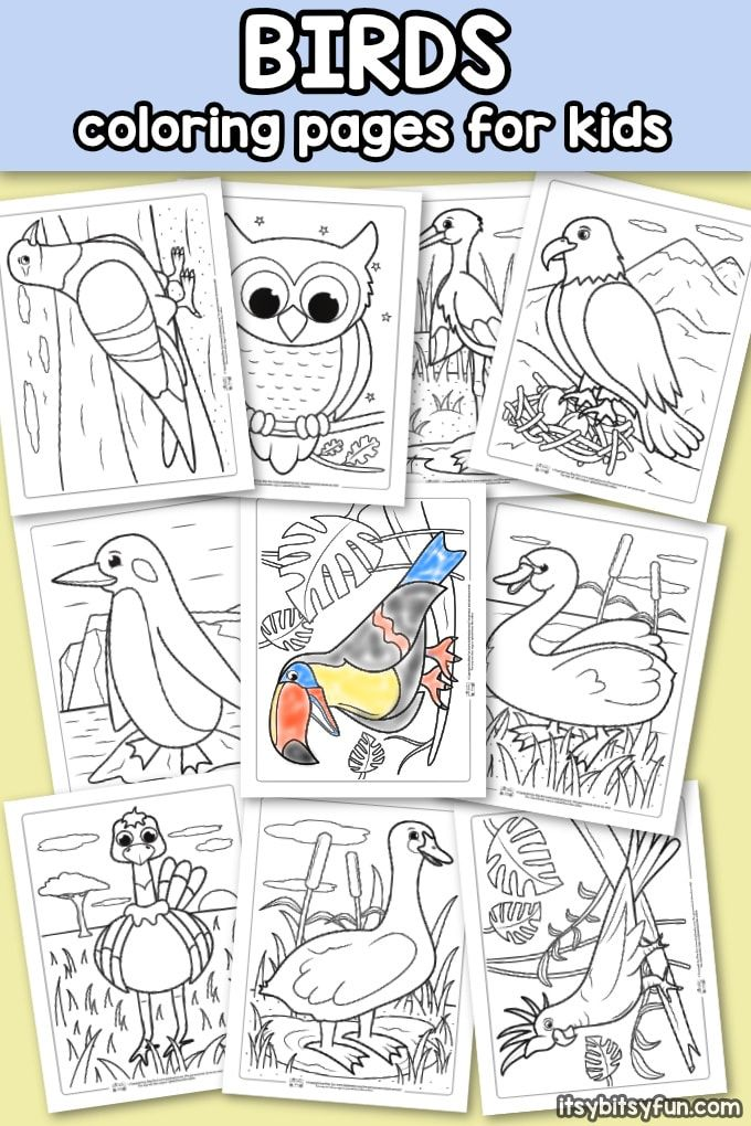 Birds Coloring Pages For Kids Itsybitsyfun Com Bird Coloring Pages Bird Crafts Preschool Owl Coloring Pages