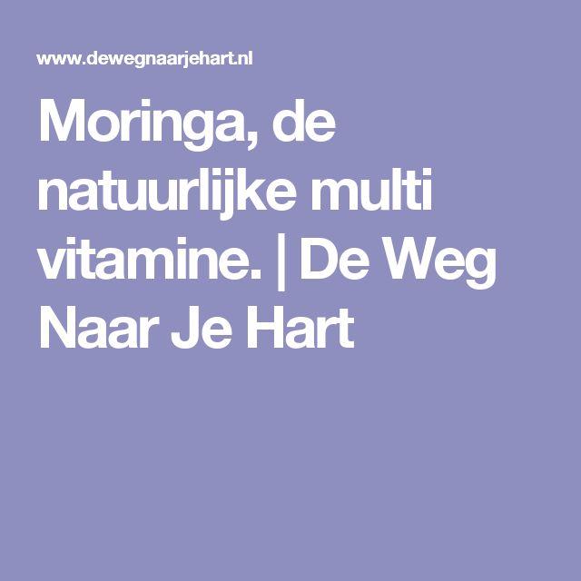 Moringa, de natuurlijke multi vitamine.   | De Weg Naar Je Hart