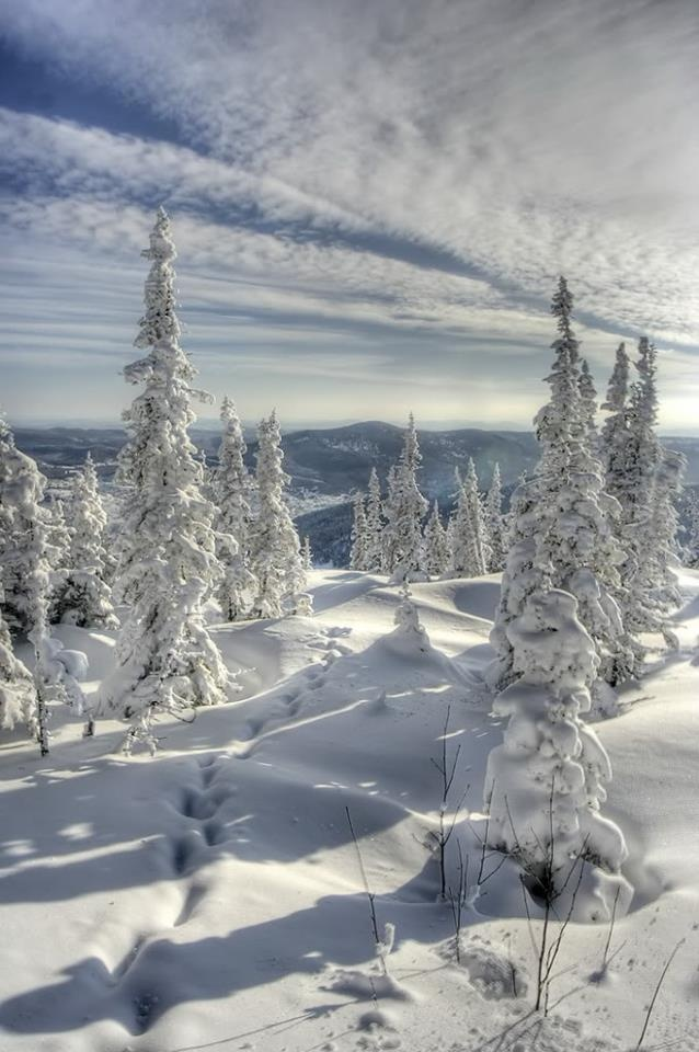 *Winter - Lapland: Winter Beauty, Nature, Snow, Winter Wonderland, Places, Landscape, Winter Scenes, Beautiful Winter