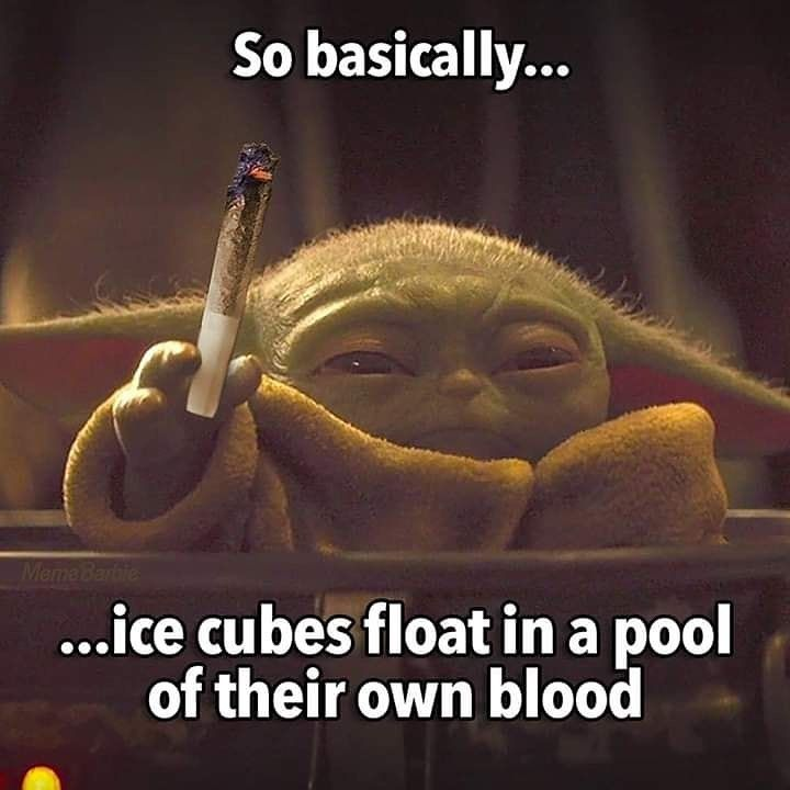 Pin By Gavin Burgess On Relatable Yoda Funny Star Wars Humor Yoda Meme