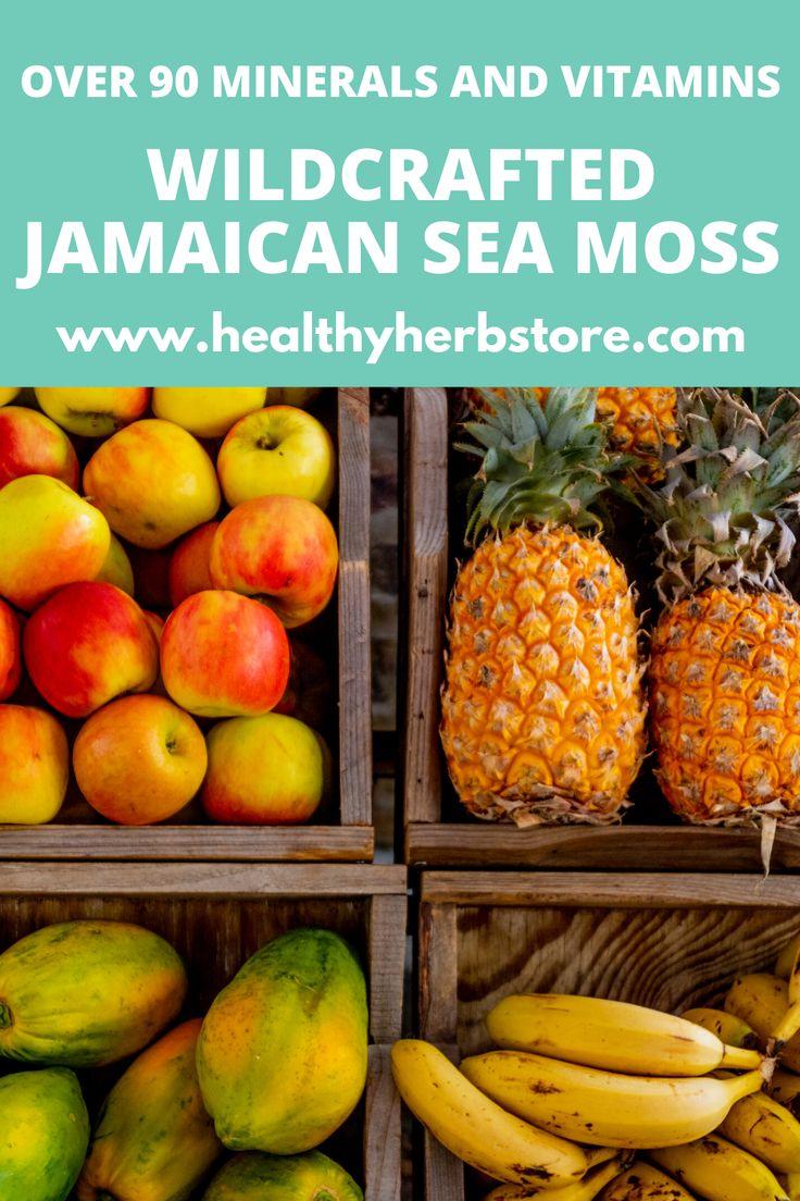 jamaican sea moss benefits in 2020 Healthy herbs, Sea