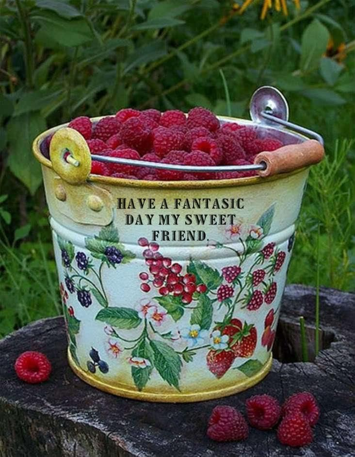 Fresh Raspberries ... especially with something chocolate