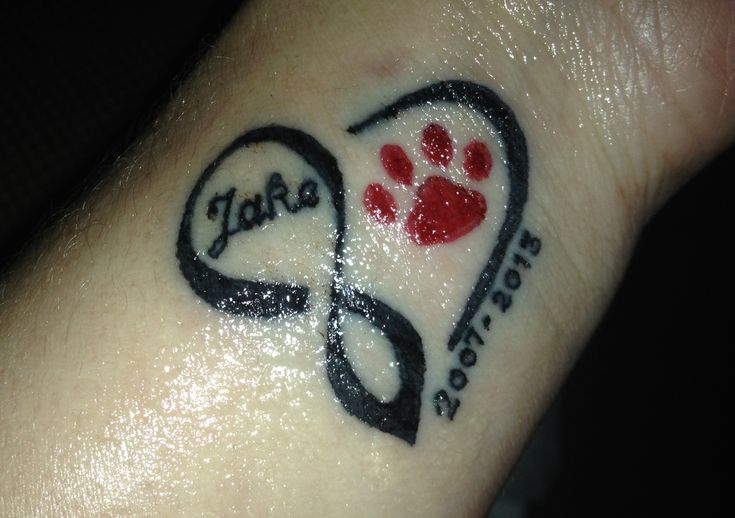 Infinity heart / dog paw tattoo...in memory of my sweet Great Dane, Jake.