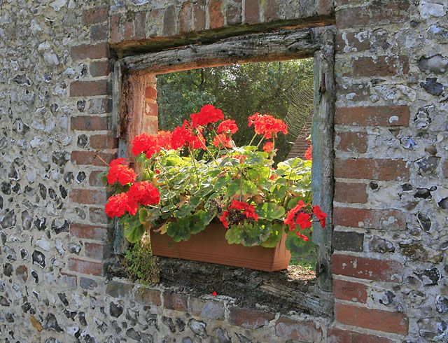 Add privacy with intrigue to your #garden with  a #flower pot opening in the fence.