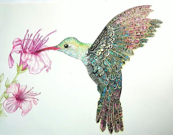 #Hummingbird #Zentangle #Doodle #Art #pencil #flowers #Draw #Linetastic #color