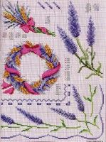 Gallery.ru / Фото #68 - Ботаника-цветы - irislena