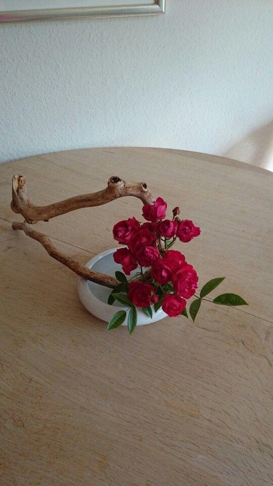 Roser i juni