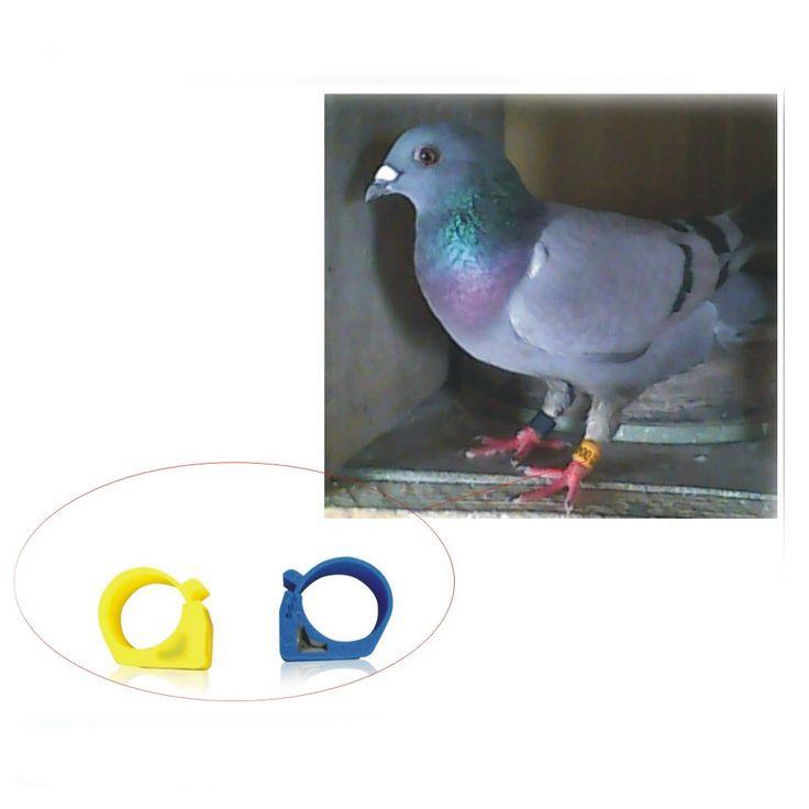 送料無料50ピースISO11785 125-134.2 Khz em4305チップリングレー手紙ピジョン用品鳥トークンリング