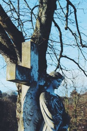 hellodaydream | VSCO Grid #photography #photographer #ocean #nature #sea #beautiful #love #tree #graveyard #angel