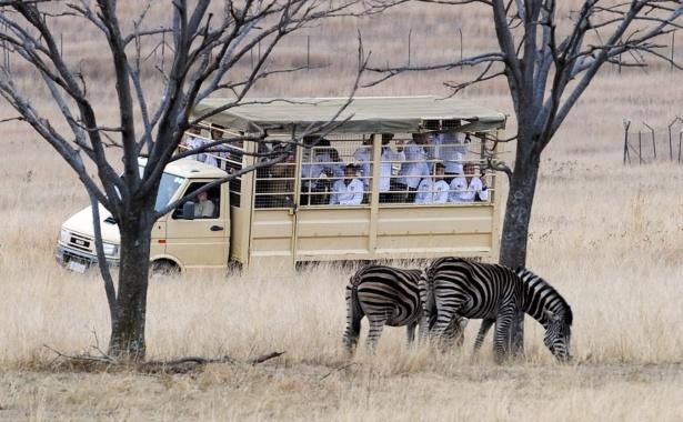 Dicas de viagem: África do Sul    http://magicweb.me/bnb
