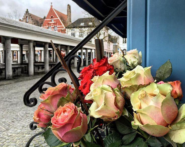 Пасмурное дождливое утро в Брюгге. Но обещают после обеда чудесную погоду. И завтра тоже. Впереди Пасхальные выходные, а у наших школьников две недели Пасхальных каникул. #брюгге #бельгия #розы #архитектура #архитектурабрюгге #экскурсия #экскурсиябрюгге #