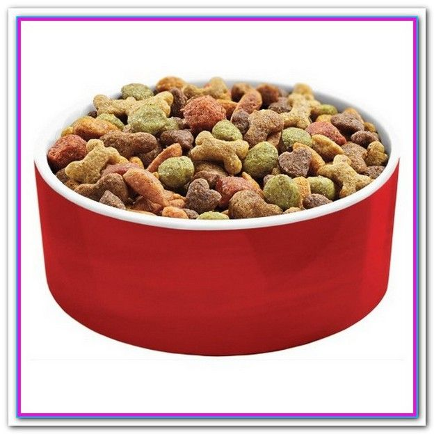 Best Dog Food For Senior Dogs With Sensitive Stomachs 5 Best