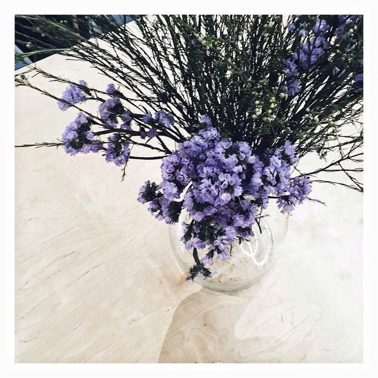 Fantastyczne popołudnie w fantastycznym miejscu w fantastycznym towarzystwie  . . #floral #plants #zielonomi #kwiaty #minimalism #flowers