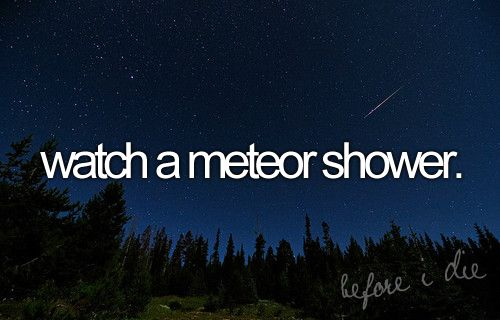 Watch a meteor shower. - Done.