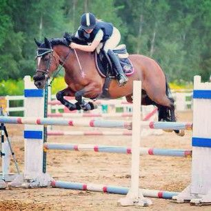 Instagram photo by marcelinamatyszczak - #Filejka #the #best #pony