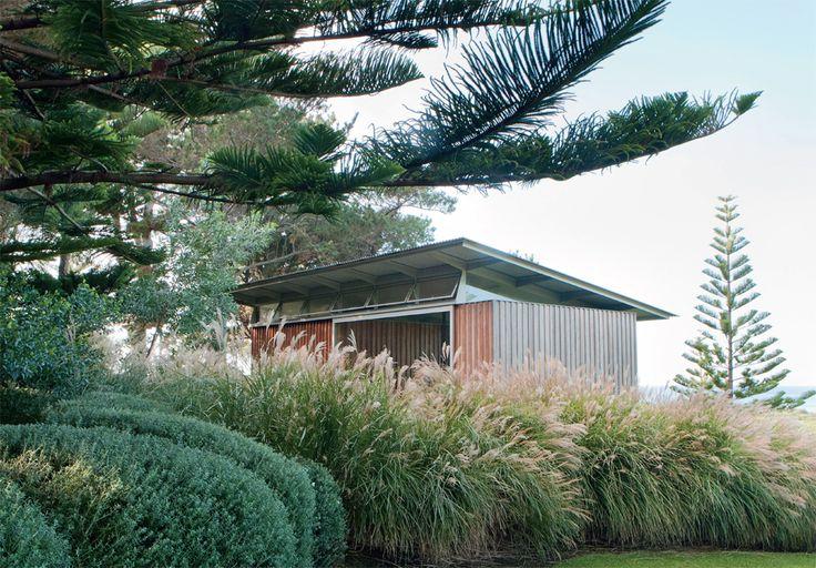 Australian coastal gardens. Pavilion, designed by Nick Tobias, against a sea of miscanthus at Tilba Tilba.