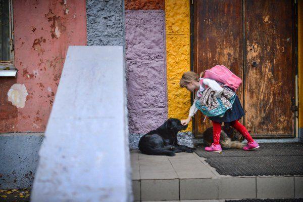 В Саратове закрывают последний детский дом. //В 2012 году в детдоме жили 46 детей, из них 18 были переданы в семьи, в 2013-м из 37 воспитанников к новым родителям ушли 13 человек, в 2014-м — шесть из 29. «Мы никогда не препятствовали семейному устройству. Получается, отдавая детей в семьи, мы сами привели себя к закрытию. Боюсь, что наша ситуация может стать отрицательным примером для д