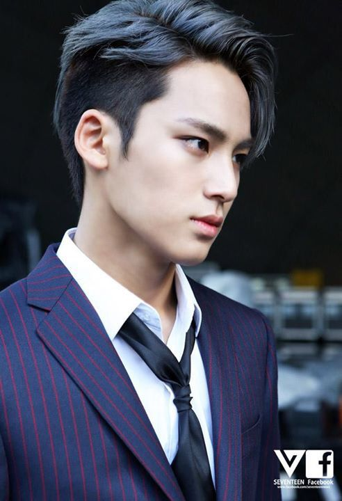 #SEVENTEEN #MINGYU  That right there is high quality hair, guys. Like c'mon, you…