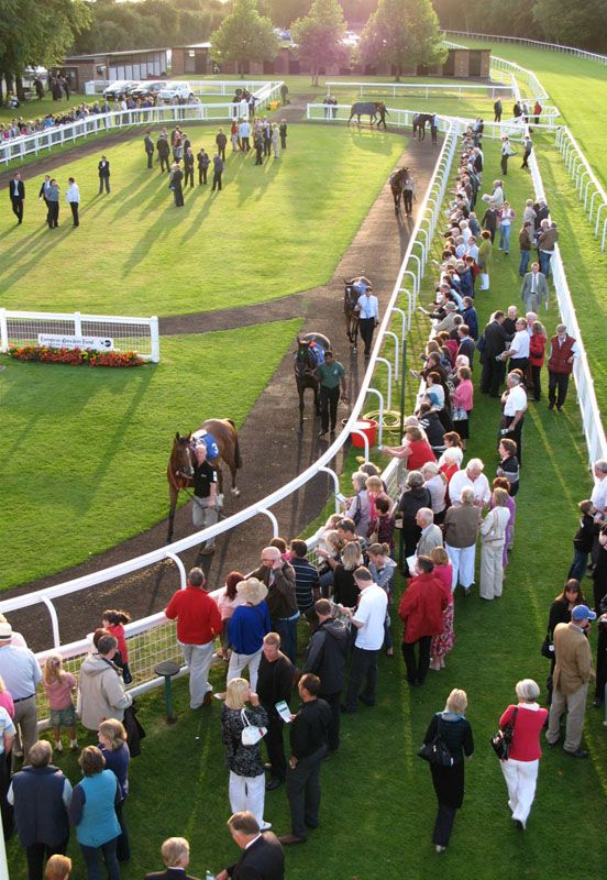 Parade ring at Salisbury racecourse.