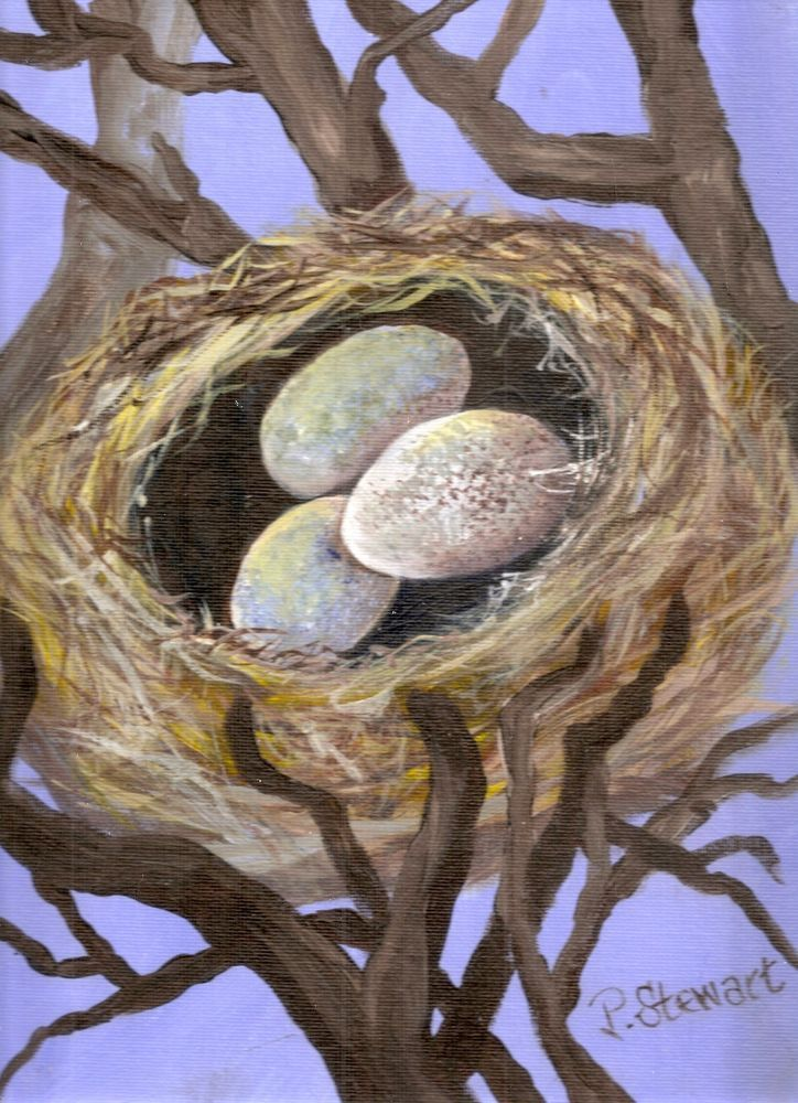 9x12 Birds Nest Tree with Bird Eggs Acrylic Painting Art by Penny Lee StewArt #Realism