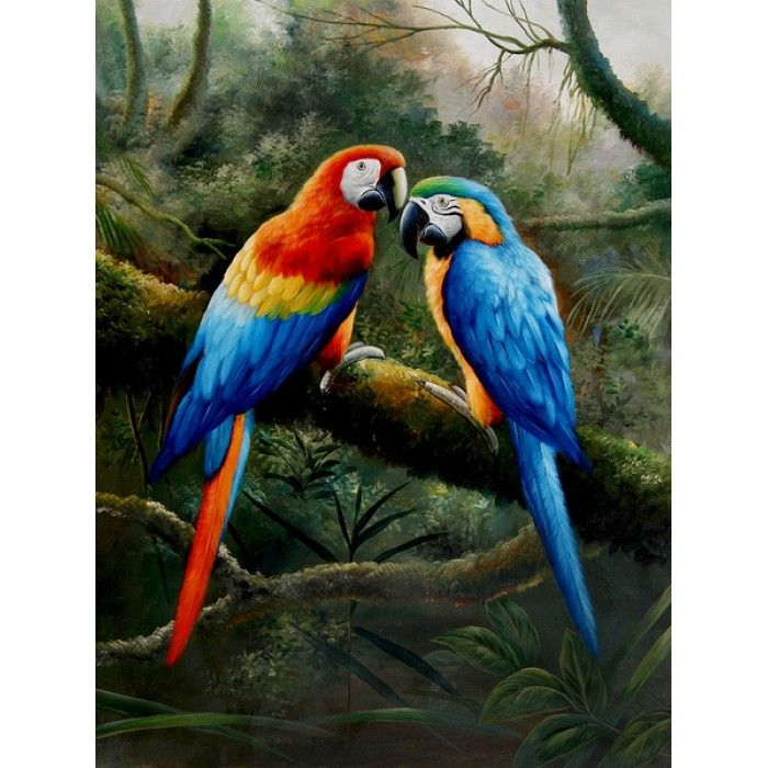 On sale macaw couple i parrots hand for Cheap canvas prints for sale