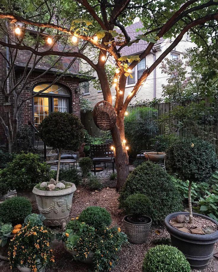 🍁🌳🍁 Die zwei transformierendsten Elemente, die ich in diesem Jahr in den Garten eingefügt hab…