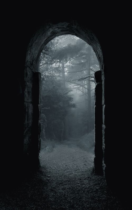 Shadow/ombre, Scary/effrayant, Nowhere, Forest/Foret, Mystery, Mist, Dark/sombre, Photo.
