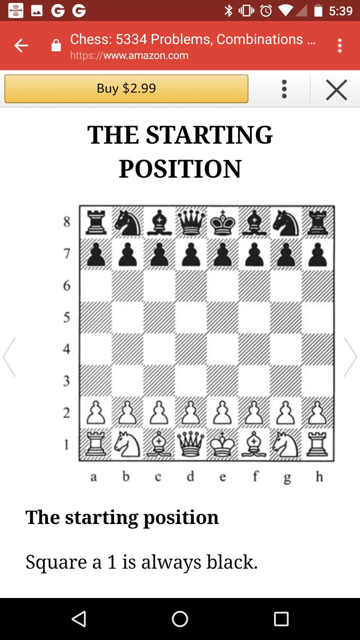 chess 5334 problems combinations and games pdf