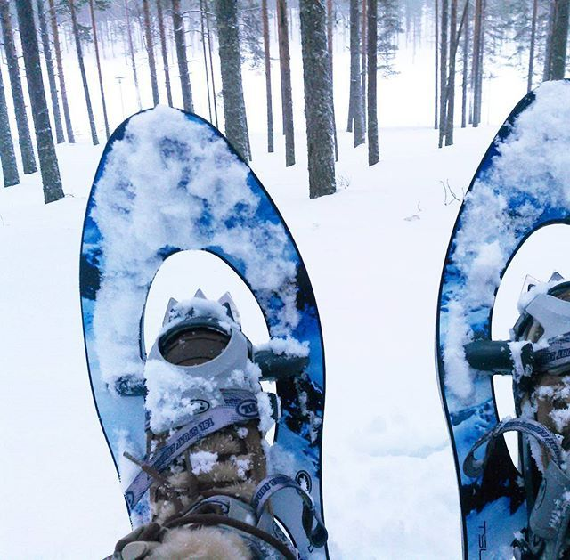 Resting in snowy forest...silence with snow shoes - peace of mind and sensitive senses!  Book your hike from Rokua! Suitable for small groups up from four peole. @rokuahealthspa @rokuanhovi @rokuanlomahuvilat  #silencetrekking #forestbathing #silencehike #snowshoeing #snowshoes #tsl #winterfun #silentmind #calmness #wellbeingfromnature #wellnessfromnature #finrelax #visitfinland #visitoulu #rokua #winteractivities #naturetravel #outdoorsfinland #outdooractivivies