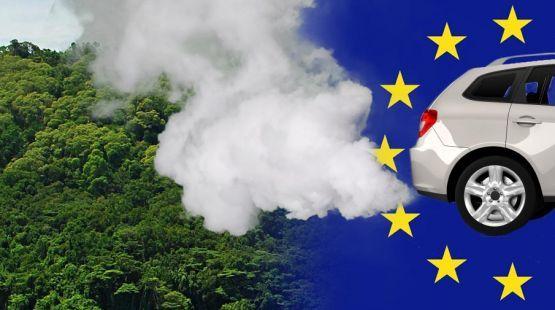 Im Frühjahr entscheidet das EU-Parlament erneut über die Biosprit-Politik. Es geht vor allem um die Höhe der Beimischung von Pflanzenkraftstoff. Schon heute verbrennen pro Jahr 1,9 Millionen Tonnen Palmöl in den Dieselmotoren der EU. Für den Anbau der Plantagen sterben die Regenwälder und auch die Orang-Utans. Wir müssen jetzt handeln. Bitte unterschreiben Sie unsere Petition: https://www.regenwald.org/aktion/908/abholzen-fuer-klimaschutz-nein-danke