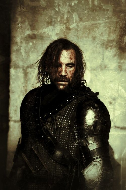 "Sandor Clegane ""The Hound"" - Rory McCann. The Hound is my Spirit Animal...."