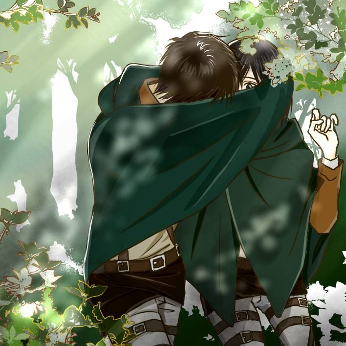 Eren and Mikasa - Attack on Titan - Shingeki no Kyojin>>>>I don't know who to ship! So much beautiful fanart!