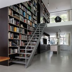 Vertical storage loft ladder