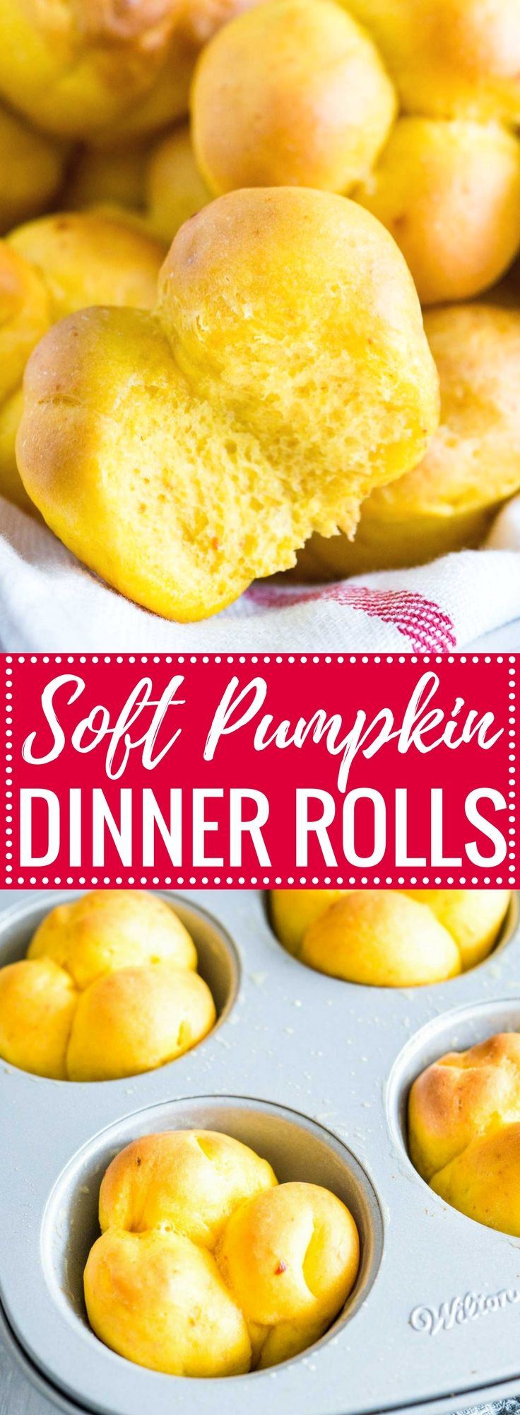 These Cheesy Pumpkin Dinner Rolls are so soft and fluffy! My go-to fall roll recipe is special enough for Thanksgiving dinner but easy to make, freezer-friendly, and so delicious with just the right amount of pumpkin flavor.