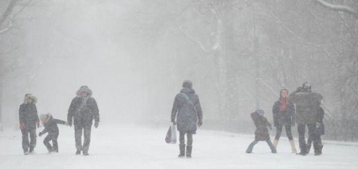 Velmi sa tesim na tuto zimu (ak bude pravda). Budu krasne biele Vianoce !!!