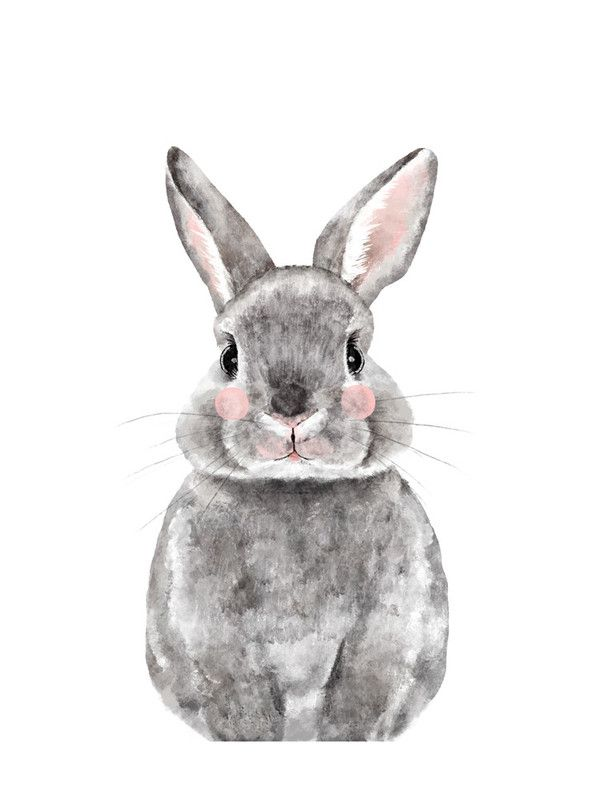 """Baby Animal Rabbit"" - Limited Edition Art Print by Cass Loh in beautiful frame options and a variety of sizes."
