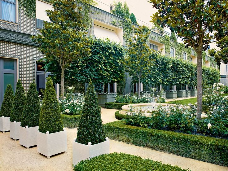 'Iceberg' roses bloom beneath magnolia trees at the Ritz Paris, freshly renovated by architect Thierry Despont; the landscaping is by Jean Mus.